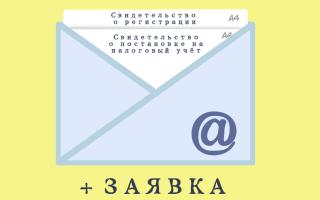 Документы, выдаваемые при открытии ООО в налоговой