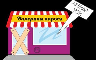 Налоговая отчетность для индивидуального предпринимателя в 2019 году