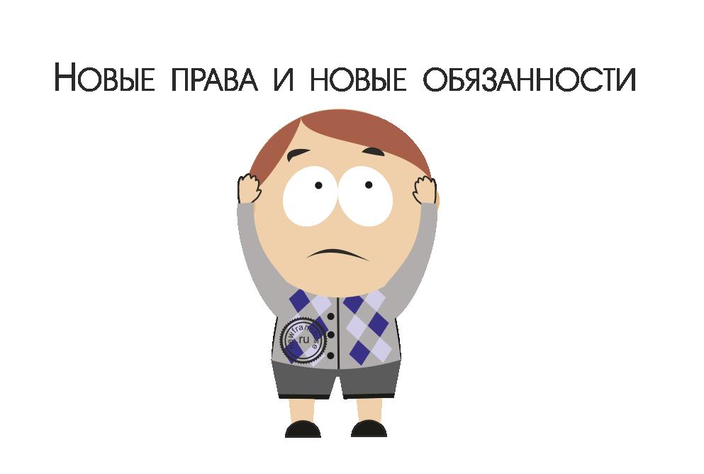 Правовой статус индивидуального предпринимателя в РФ