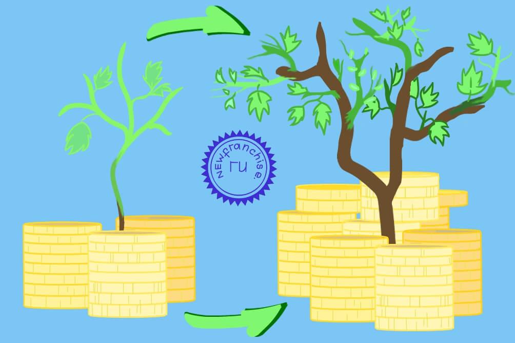 Особенности бухгалтерского учета уставного капитала в ООО: законодательство, увеличение, уменьшение, проводки